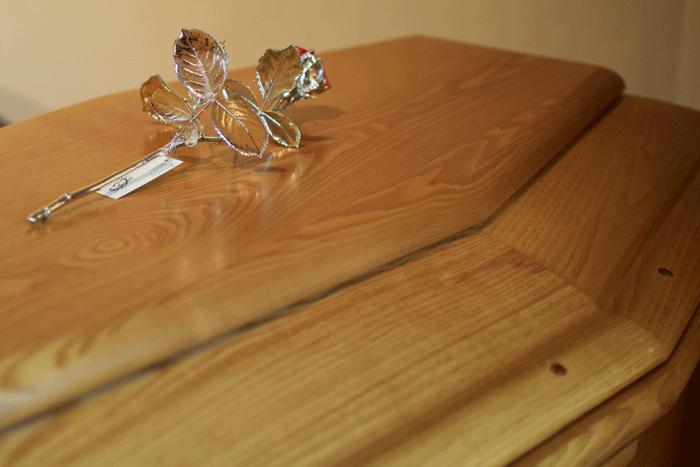 Rosa-argento-cofanoDSC_0479